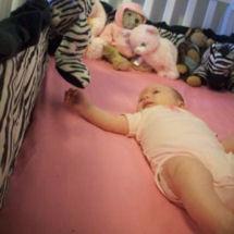 Hot pink black and white zebra baby girl nursery crib bedding