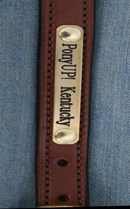 PonyUP! Kentucky's Signature Brass Nameplate