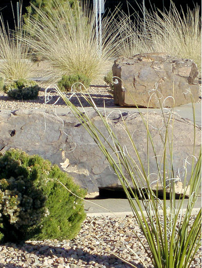 Water saving landscaping ideas