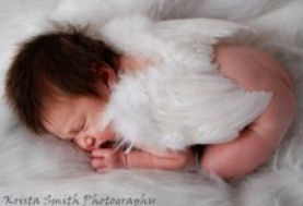 Baby angel picture with lovely wings