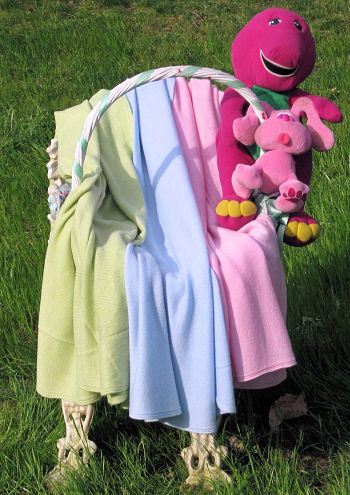 Cashmere baby blankets make excellent photo props in a variety of colors
