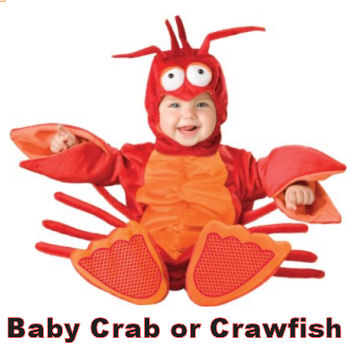 Infant baby crab crawfish or lobster Halloween costume