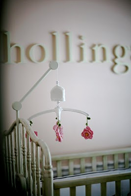 Hollings Pink and Brown Baby Girl Nursery Design - Sunday Grant Photography Asheville, NC