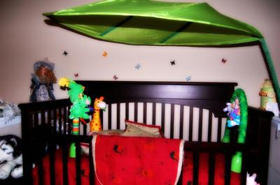 Hot Pink and Lime Green Tropical Jungle Kingdom Baby Nursery Theme Pictures