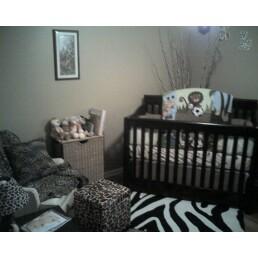 An exotic jungle Safari baby nursery theme with a black and white zebra print area rug.