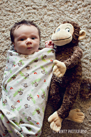 Newborn baby boy monkey theme photo shoot ideas