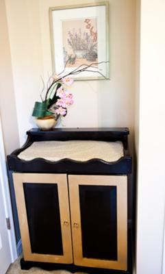 Boaz's changing table repurposed  from being aTV cabinet from the 1980's  that I topped with a cheetah print pillow case!