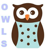 Tree and owl nursery wall decals and stickers for a little hoot forest theme baby room