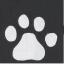 Puppy dog paw print prints baby nursery wall stencil pattern template