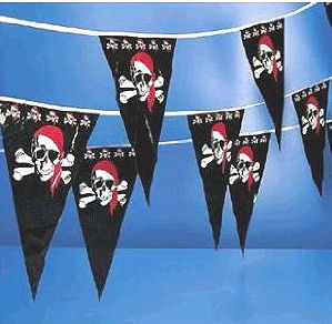 Pirate Jolly Roger flag baby shower party banner wall decorations