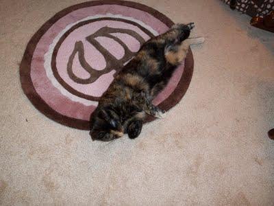 Round brown and pink princess crown nursery rug.