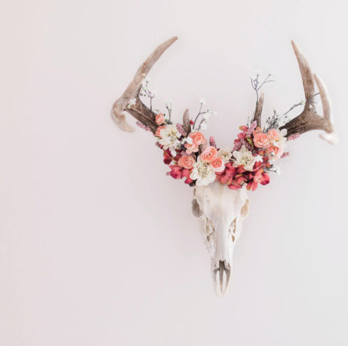 Bleached white whitetail deer skull antlers decorated with a floral wreath arrangement of pink silk flowers.  Southwest baby girl nursery decor decorating ideas.