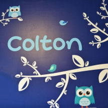 Owl theme baby boy nursery decorated in navy blue and white