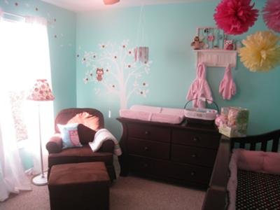 Baby girl's whimsy owl themed nursery entry.