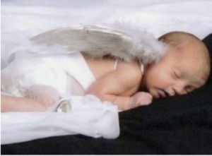 Baby angel newborn portrait with angel wings photo props