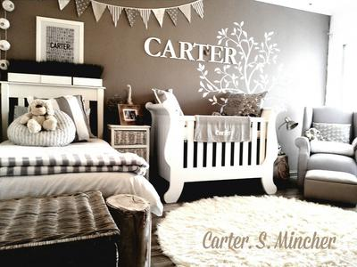 Baby Carter's Nature Themed Nursery Design