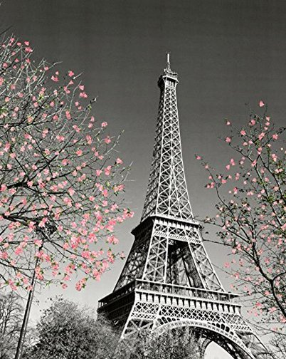 Black and white photo of the Eiffel Tower in Paris for a vintage baby girl Paris themed nursery room wall