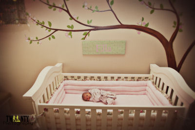 Ella's Sweet Cherry Blossom Pink and Green Nursery