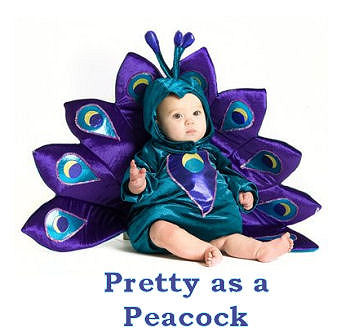 Fancy baby peacock Halloween costume for newborn to toddler size