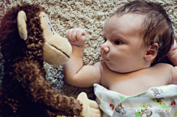 Baby boy monkey theme newborn photo shoot props ideas