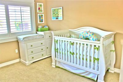 Baby's Owl Nest Nursery